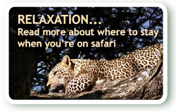 Read more about where to stay when you are on a safari